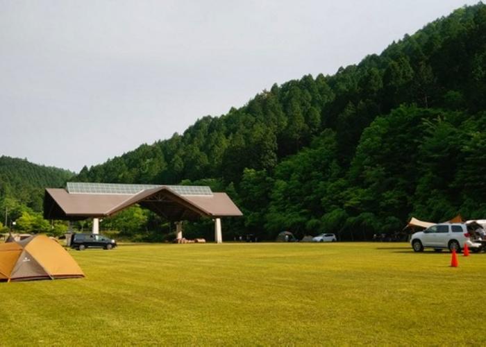 (4)フリーサイトキャンプエリア(全面芝)「5月~11月月末土曜日開放」